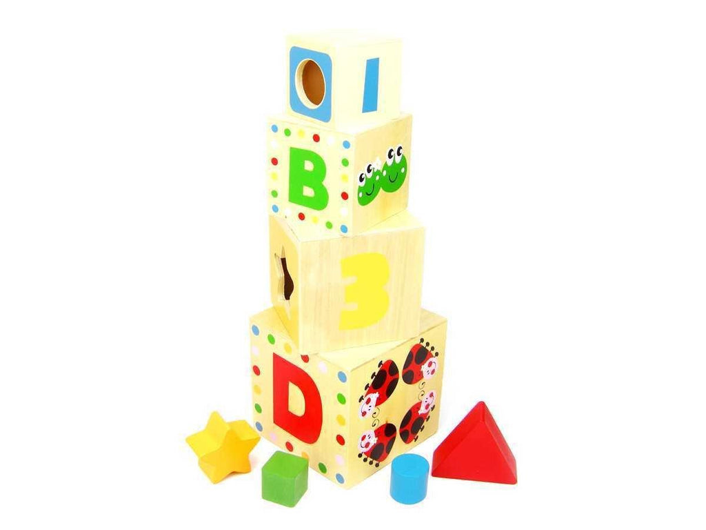 Wooden Shape Sorter Box by Tooky Toy