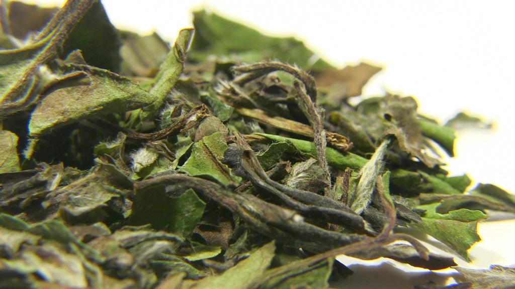 White Tea - Pai Mu Tan - Black Iron Tea Traders