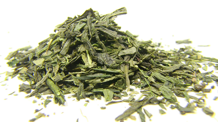 Green Tea - Japan Sencha Kakagawa - Black Iron Tea Traders