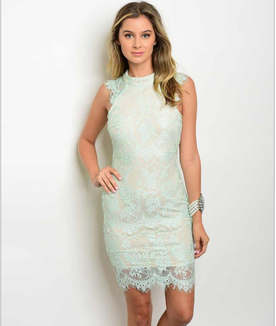 Mint Tan Lace Bodycon Mini Dress