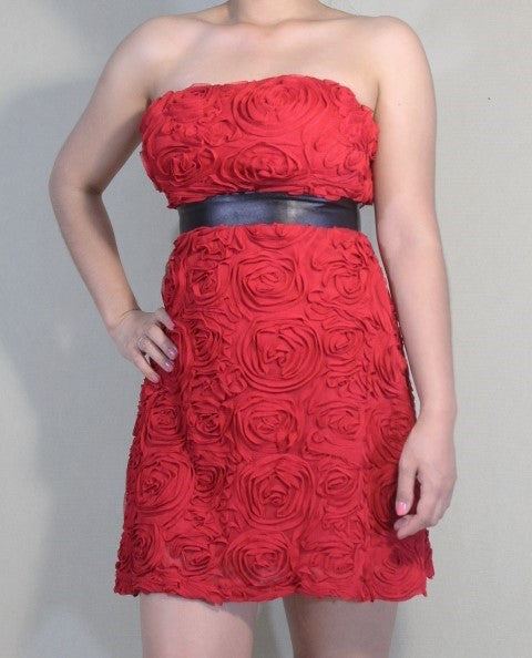 Red Roses Dress for Women (GENTLY WORN) - MsBlueSleeve