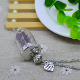 glass Dry flower necklace real flower Bottle necklace Pendant necklace silver plated chain Necklace for women jewerly fashion