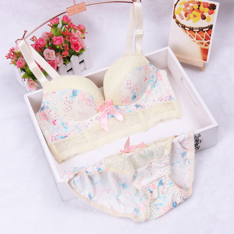 New women brand bra fashion winter dress bra set vs sexy underwear lace sexy women bra set gathered push up bra brief set
