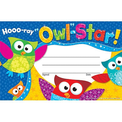 Hoo-Ray Owl Star - pack of 30 certificates