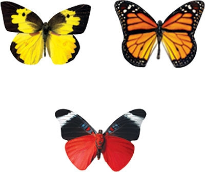 Bold Butterflies - 800 stickers - minibeasts