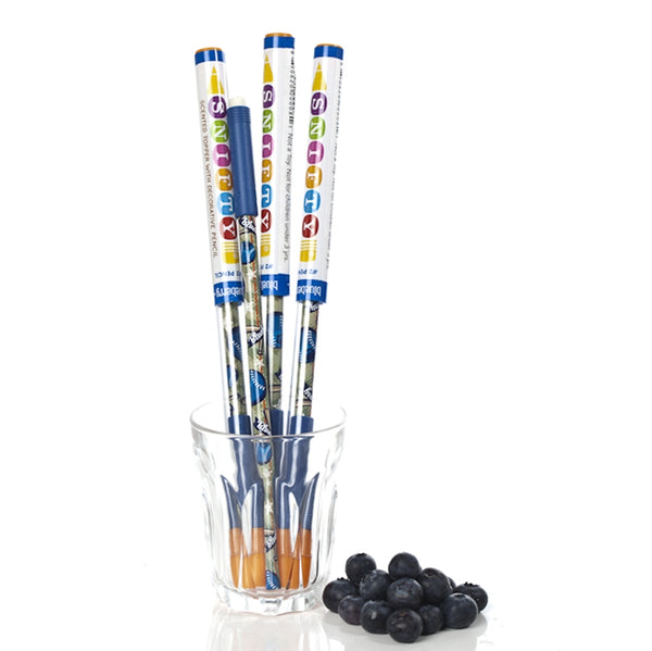 Snifty Scented Pencil Topper - Blueberry