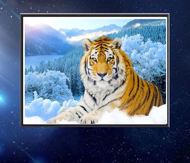 CD1036 Crystal 5D Tiger30*40