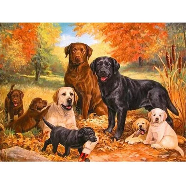 D59051 Crystal 3D Dogs Labrador and Golden 30*40