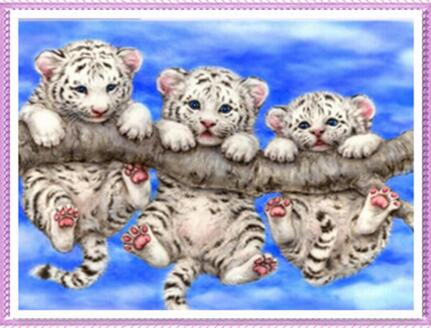 CD10108 Crystal 5D Little Tiger30*40