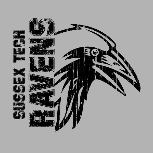 Sussex Tech Ravens