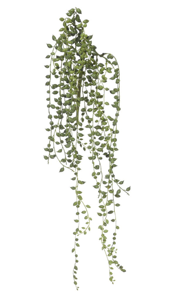 Greenery - Hanging String of Pearls- 49cm