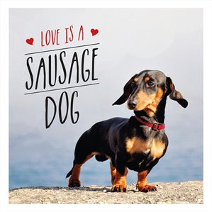 Book - Love Is A Sausage Dog