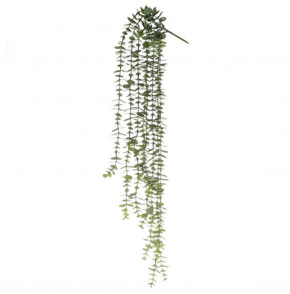 Coin Leaf Hanging Bush 81cm