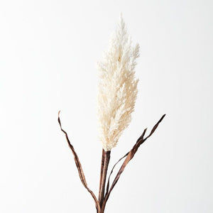 Floral Interiors - Plume Grass w Leaf - Cream - 83cml