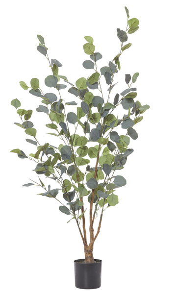 Eucalyptus tree 120cm green