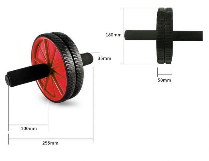 Buy TnP Accessories Ab Wheel With Foam Handle Red