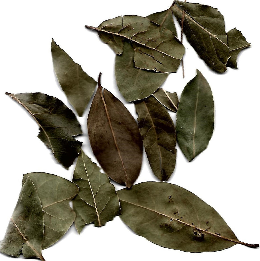 BAYLEAF DRIED