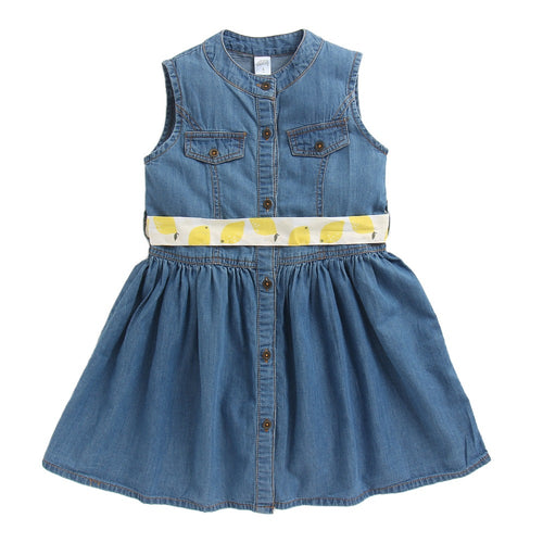 Toddler Girl 'Daisy' Denim Dress