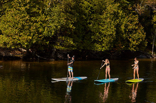 3 paddleboarders on water