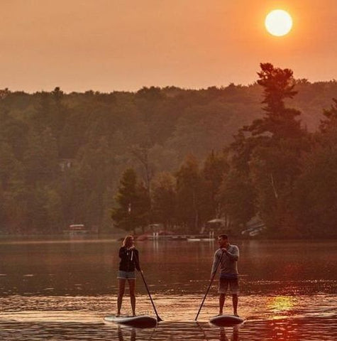 Stand up paddle boarders paddling at sunset