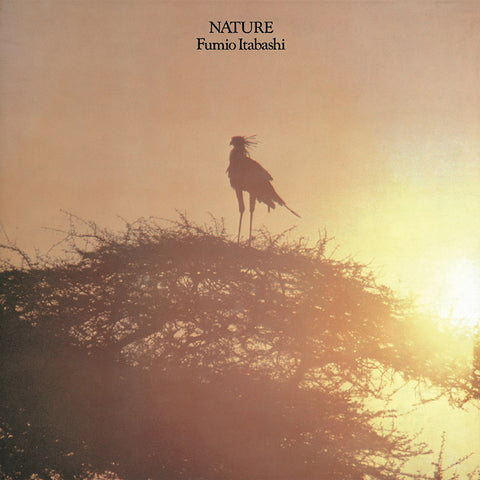 Fumio Itabashi - Nature LP