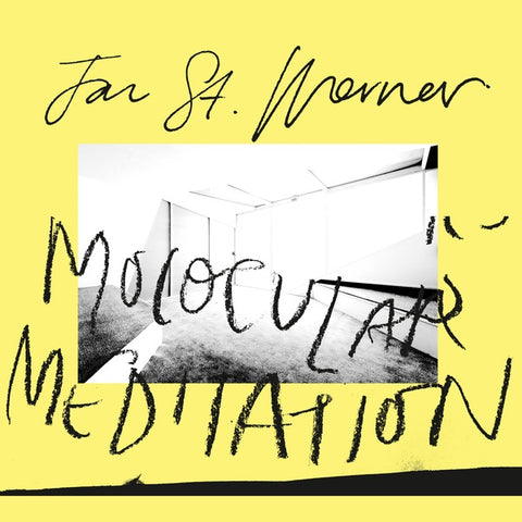 Jan St. Werner - Molocular Meditation LP