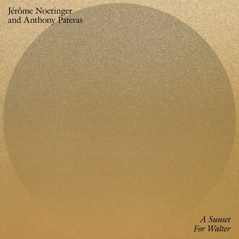 Jerome Noetinger & Anthony Pateras - A Sunset for Walter LP