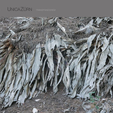 UnicaZurn - Transpandorem LP