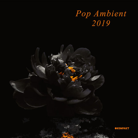 Various - Pop Ambient 2019 2xLP