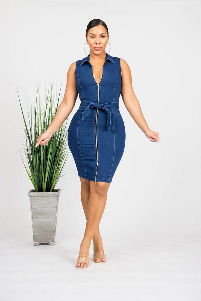 Zipline Denim Dress