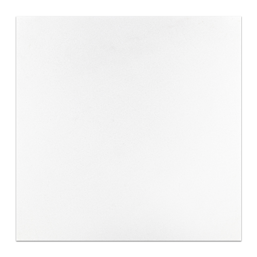 "White Thassos Select 12"" x 12"" Honed - Elon Tile"