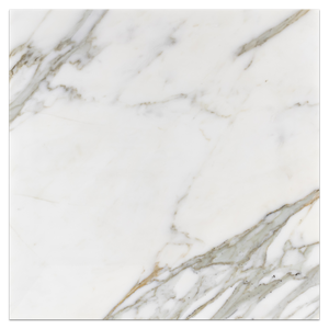 "Calacatta Gold 18"" x 18"" Polished - Elon Tile & Stone"