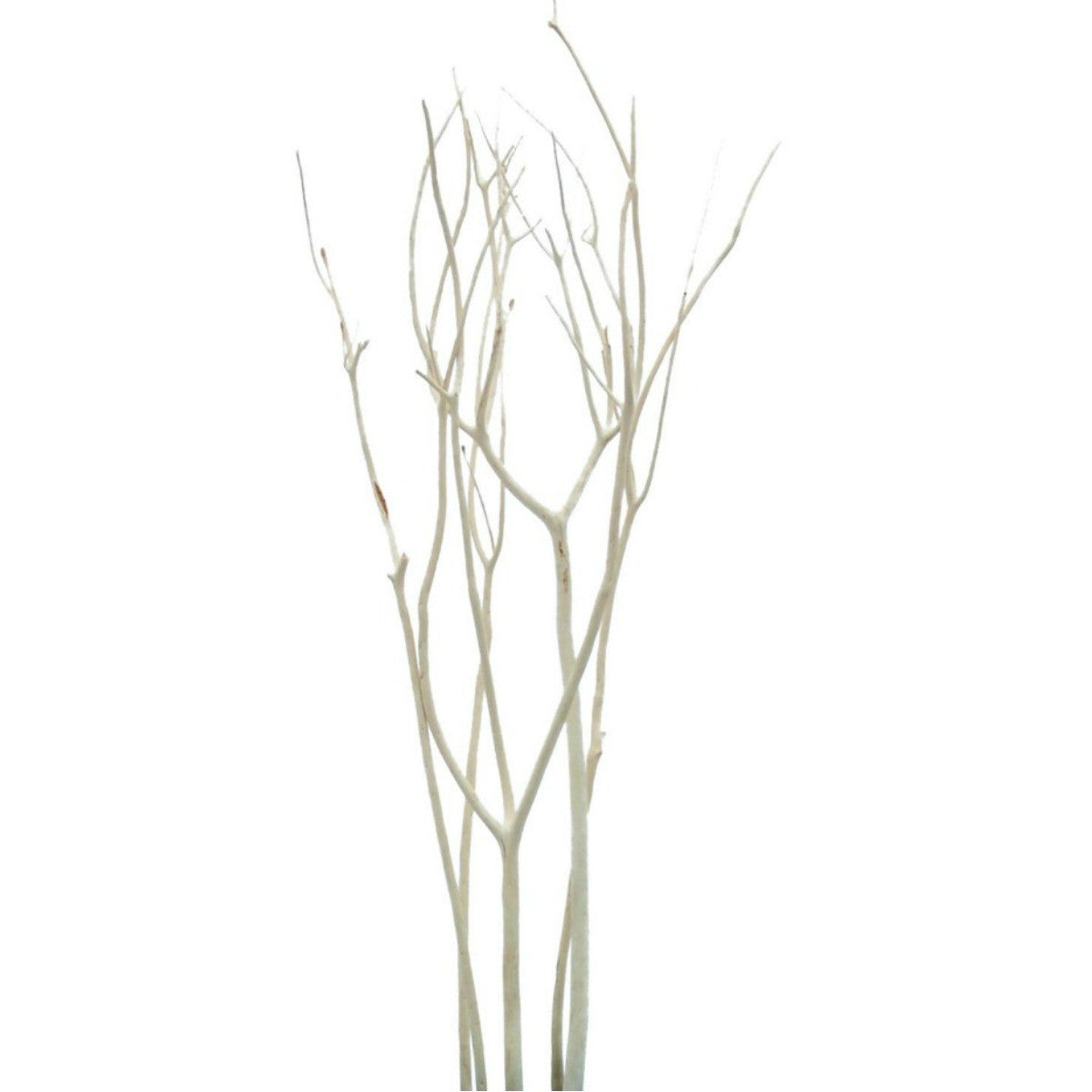 Mitsumata Branches Decorative Bleached Limbs 3 Pcs