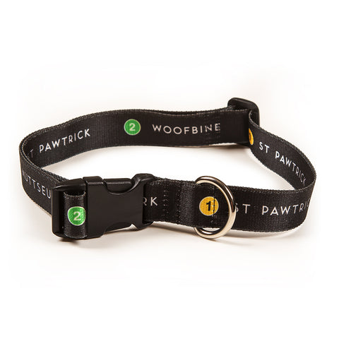 Doggie Station Pet Collar
