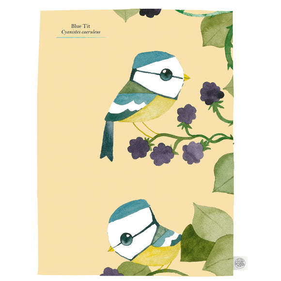 Matt Sewell's Birds – Tea Towel Multipack