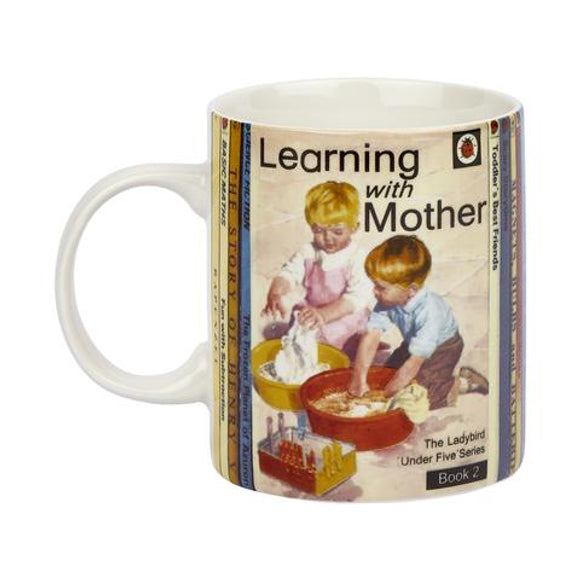 Vintage Ladybird Learning With Mother Mug
