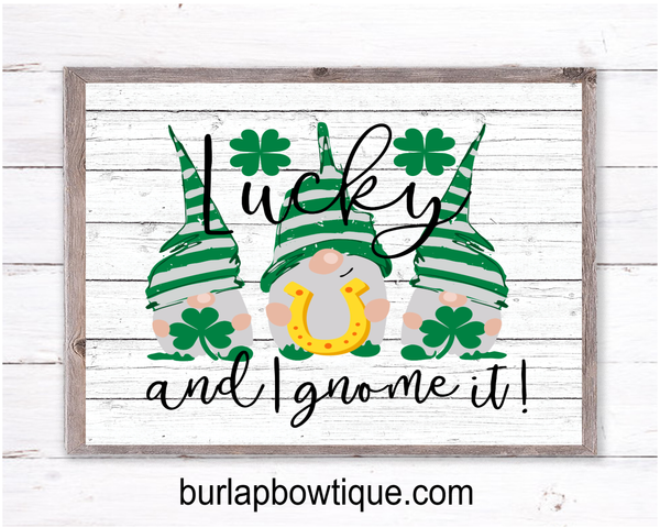 Lucky Gnome St. Patty's Day Sign, Wreath Sign Attachment, Rustic Sign, Farmhouse Decor