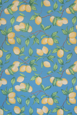 Capri Lemon Wallpaper - White - Barneby Gates