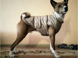 Warm Padded Polyester Fleece Dog Jackets XS-XXXL