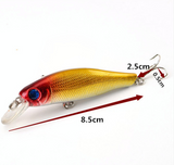 6pcs Colorful Fishing Lures