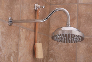 Rainfall Shower Head with Victorian Arm