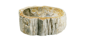 "Petrified Wood Sink-10-14"" Group"