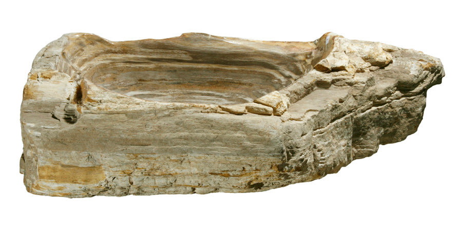 "Petrified Wood Sink-25""-30"" Group"