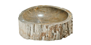 "Petrified Wood Sink-20-25"" Group"