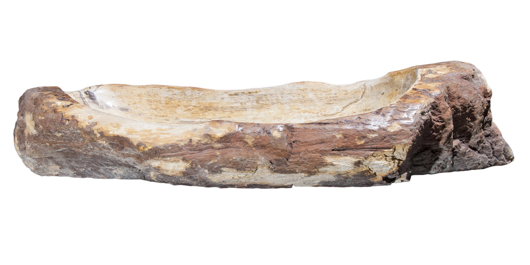 "Petrified Wood Sink-30""-36"" Group"