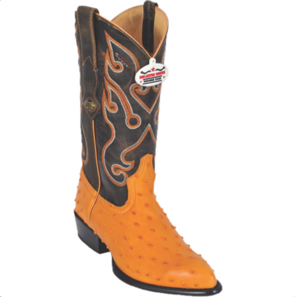 Men's Los Altos Ostrich Print Boots J Toe