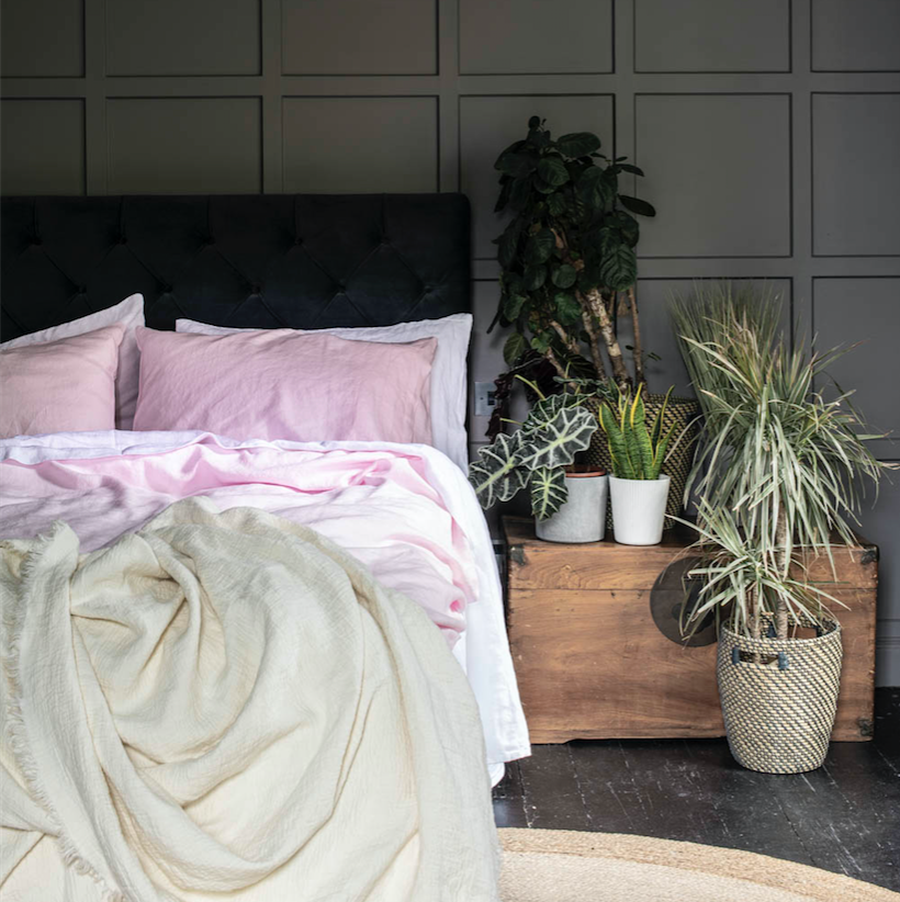 Blush Pink Basic Bundle - Piglet in Bed