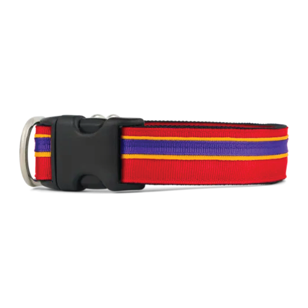 Striped Pet Collar
