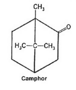 camphor oil in medicine