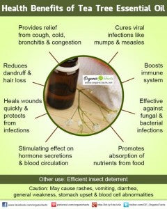 tea tree health benefits